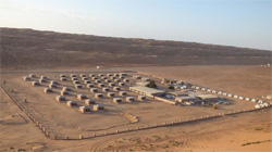 ARABIAN ORYX CAMP,
