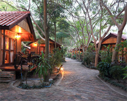 BUNDHAYA RESORT,