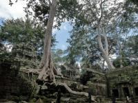 THAILANDIA, BIRMANIA, TEMPIO TA PROHM, CAMBOGIA